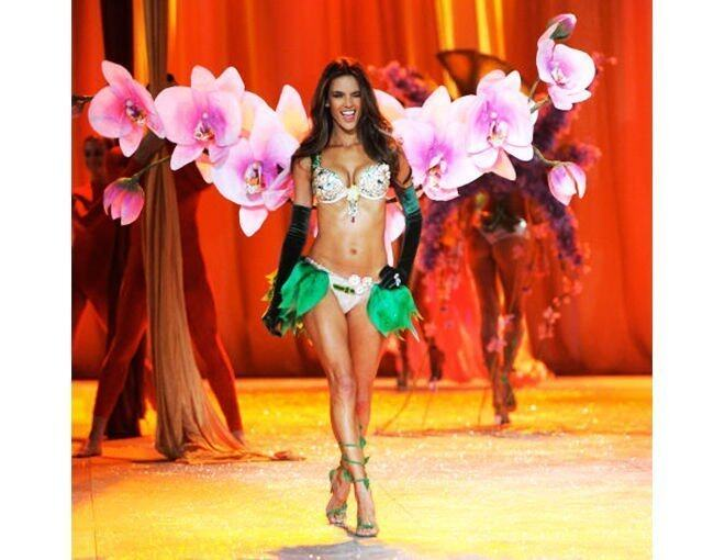 <p>2012 年 Alessandra Ambrosio 示範的The Floral Fantasy Bra,總值250萬美元。</p>
