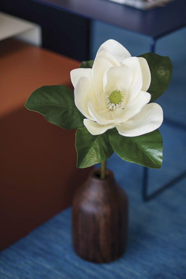 單支盛開純白木蘭花,簡約大方。